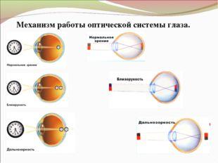Механизм работы оптической системы глаза.