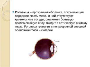 Роговица – прозрачная оболочка, покрывающая переднюю часть глаза. В ней отсу