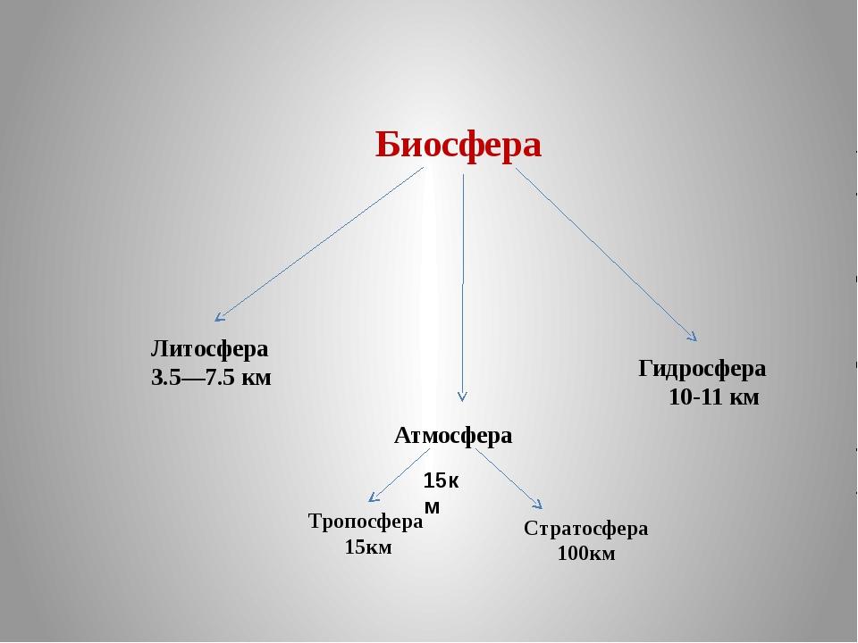 Биосфера Литосфера 3.5—7.5 км Атмосфера Гидросфера 10-11 км Тропосфера 15км...