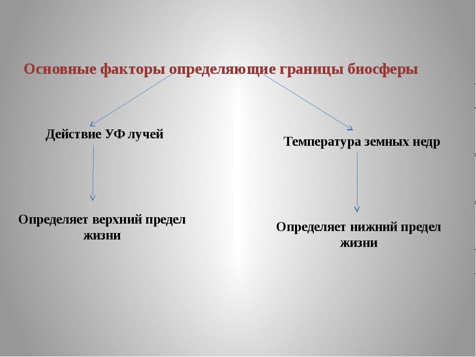 Основные факторы определяющие границы биосферы Действие УФ лучей Температура...