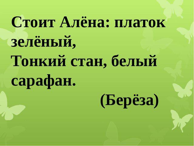 Стоит Алёна: платок зелёный, Тонкий стан, белый сарафан. (Берёза)