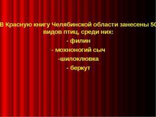 В Красную книгу Челябинской области занесены 50 видов птиц, среди них: - фил