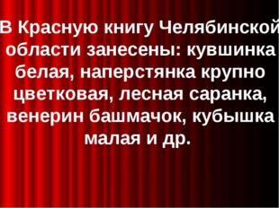 В Красную книгу Челябинской области занесены: кувшинка белая, наперстянка кр