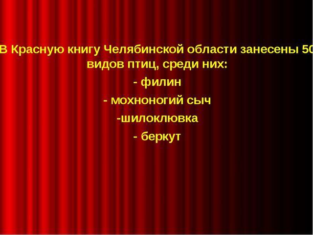 В Красную книгу Челябинской области занесены 50 видов птиц, среди них: - фил...