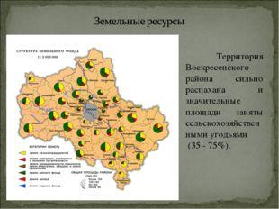 Территория Воскресенского района сильно распахана и значительные площади зан
