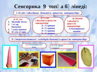 Сенсорика 9 топқа бөлінеді: І. Көріп қабылдауын дамытуға арналған материалдар