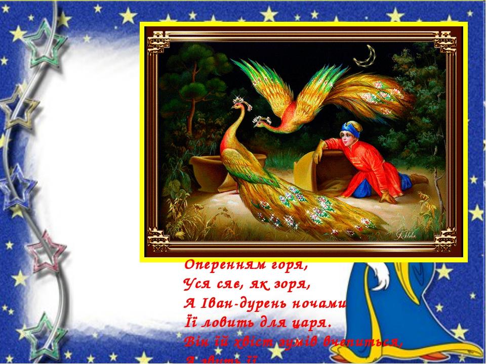 Оперенням горя, Уся сяє, як зоря, А Іван-дурень ночами Її ловить для царя. Ві...