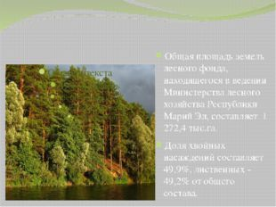 Общая площадь земель лесного фонда, находящегося в ведении Министерства лесн