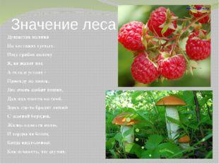 Значение леса Душистая малина На кустиках густых. Ищу грибов поляну Я, не жал