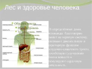 Лес и здоровье человека В определённых дозах фитонциды благотворно влияют на