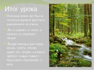 Итог урока Испокон веков лес был и остается верным другом и защитником челове