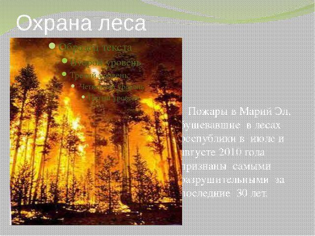 Охрана леса Пожары в Марий Эл, бушевавшие в лесах республики в июле и августе...
