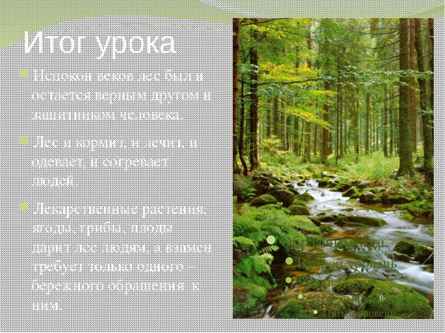 Итог урока Испокон веков лес был и остается верным другом и защитником челове...