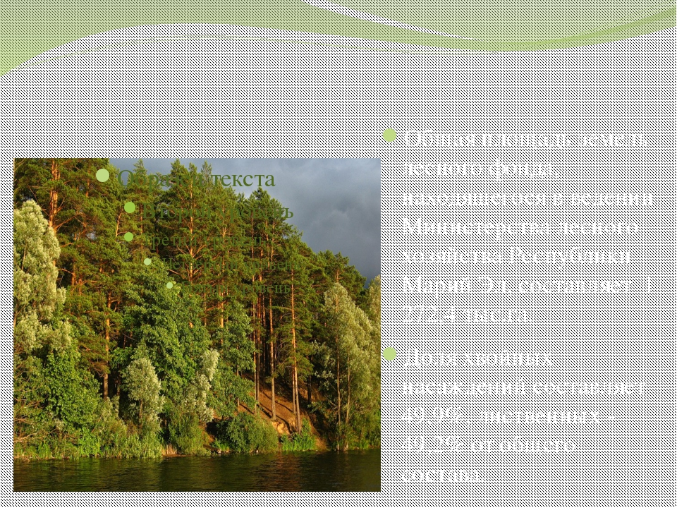 Общая площадь земель лесного фонда, находящегося в ведении Министерства лесн...