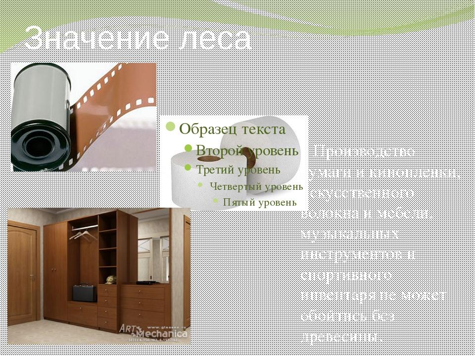 Значение леса Производство бумаги и кинопленки, искусственного волокна и мебе...