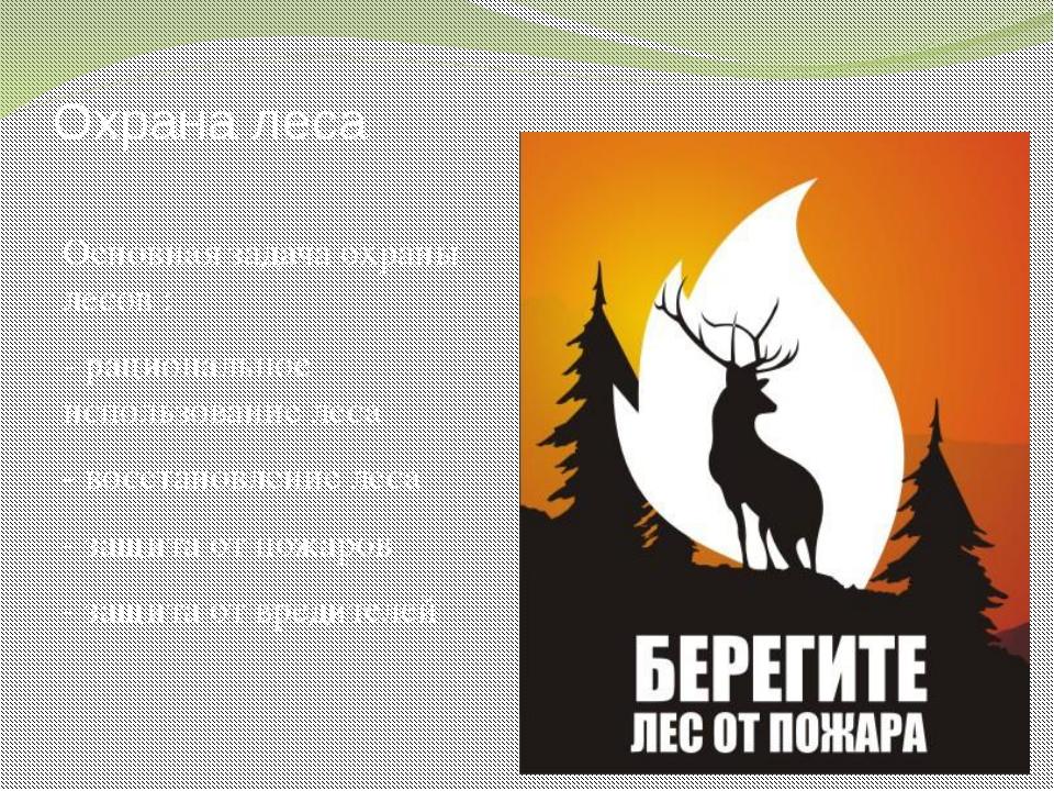 Охрана леса Основная задача охраны лесов : - рациональное использование леса...