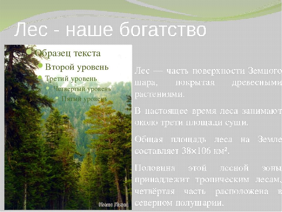 Лес - наше богатство Лес — часть поверхности Земного шара, покрытая древесным...