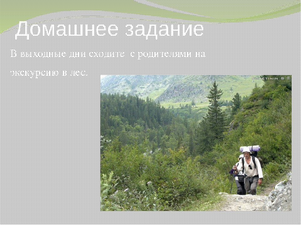 Домашнее задание В выходные дни сходите с родителями на экскурсию в лес. 54