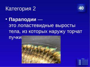 Категория 2 Параподии— этолопастевидные выросты тела, из которых наружу тор