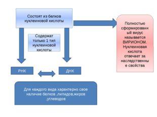Состоят из белков нуклеиновой кислоты Содержат только 1 тип нуклеиновой кисло