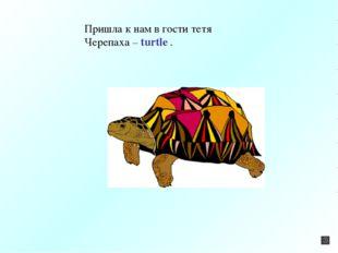 Пришла к нам в гости тетя Черепаха – turtle .