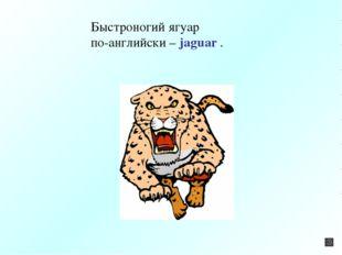 Быстроногий ягуар по-английски – jaguar .