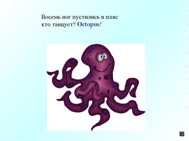 Восемь ног пустились в пляс кто танцует? Octopus!