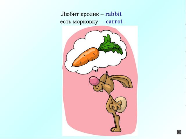 Любит кролик – rabbit есть морковку – carrot .