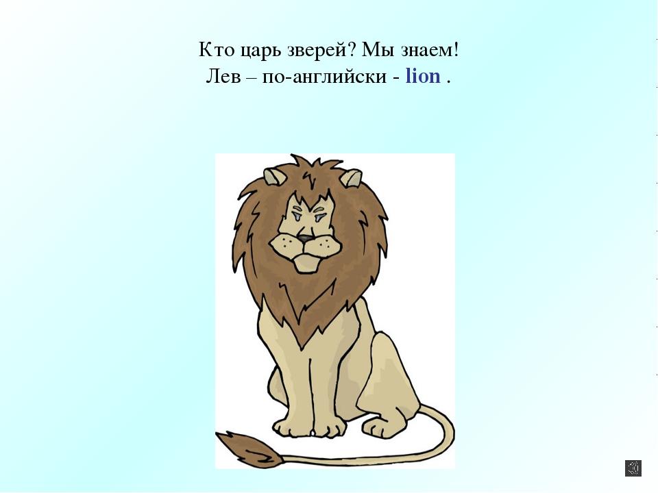 Кто царь зверей? Мы знаем! Лев – по-английски - lion .