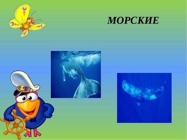 МОРСКИЕ