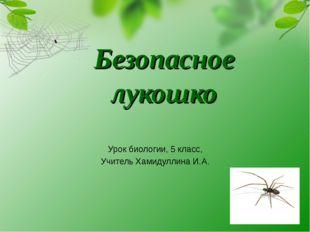 Безопасное лукошко Урок биологии, 5 класс, Учитель Хамидуллина И.А.