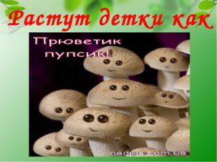Растут детки как грибы