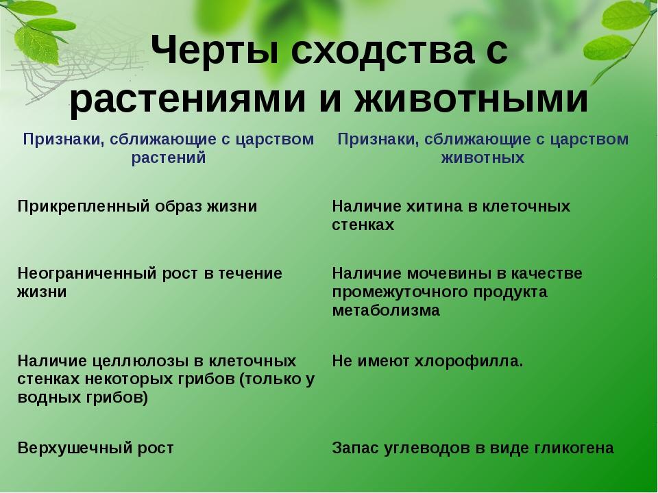 Черты сходства с растениями и животными Признаки, сближающие с царством расте...