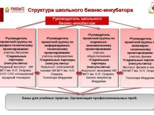 Структура школьного бизнес-инкубатора Руководитель проектной группы по аграрн