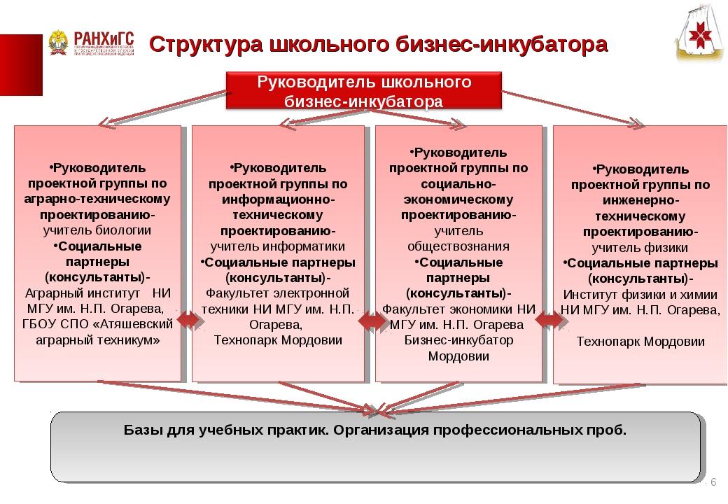 Структура школьного бизнес-инкубатора Руководитель проектной группы по аграрн...