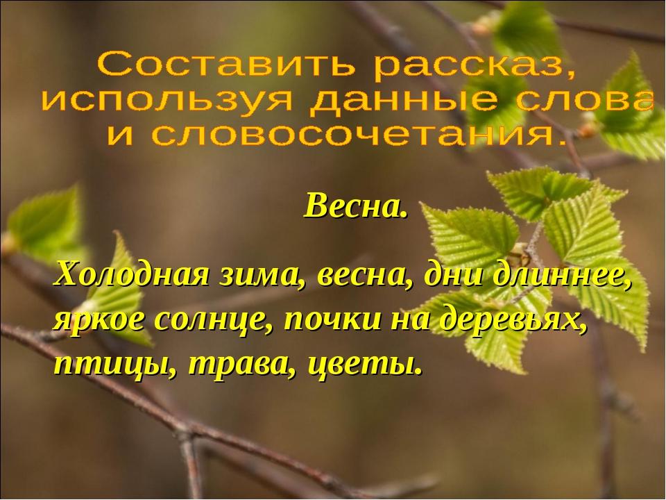 Весна. Холодная зима, весна, дни длиннее, яркое солнце, почки на деревьях, пт...