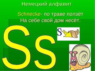 Schnecke- по траве ползёт На себе свой дом несёт. Немецкий алфавит