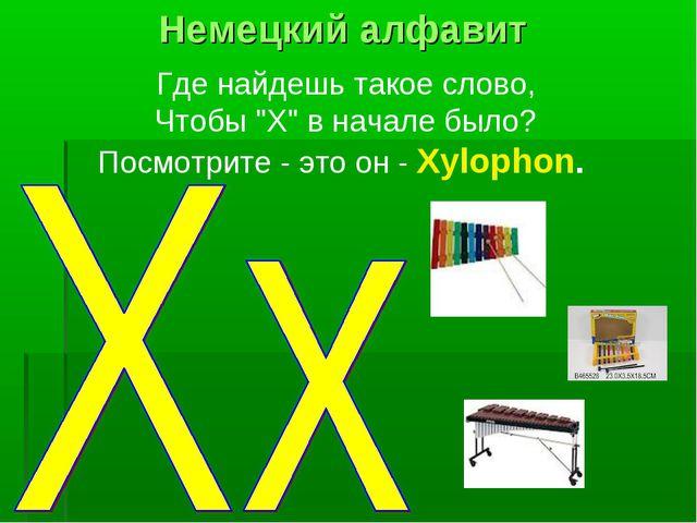 """Где найдешь такое слово, Чтобы """"X"""" в начале было? Посмотрите - это он - Xylop..."""