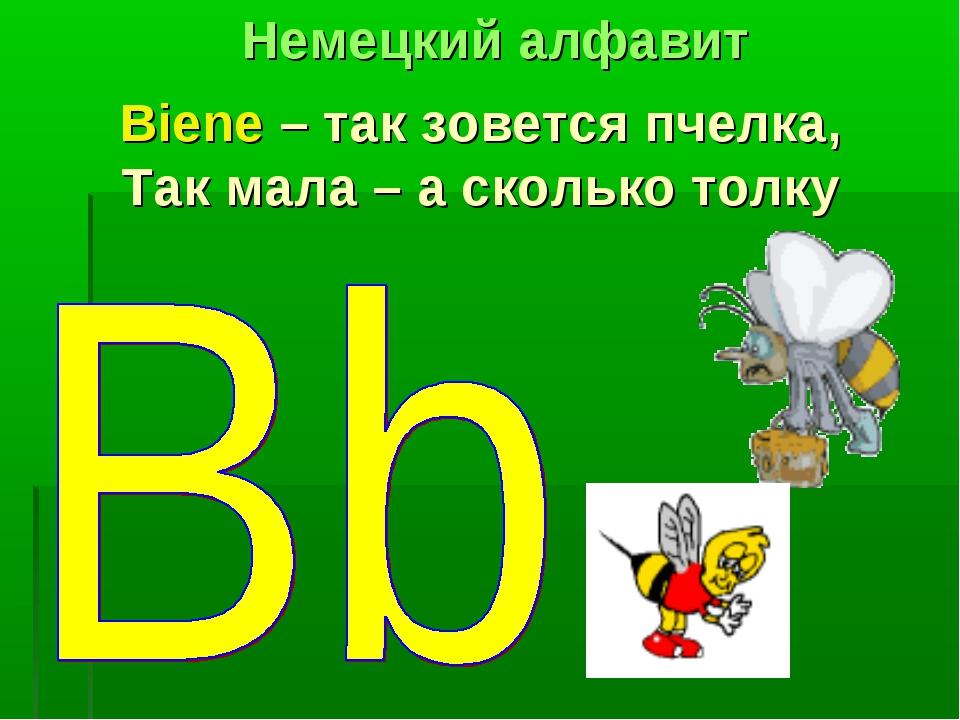 Biene – так зовется пчелка, Так мала – а сколько толку Немецкий алфавит