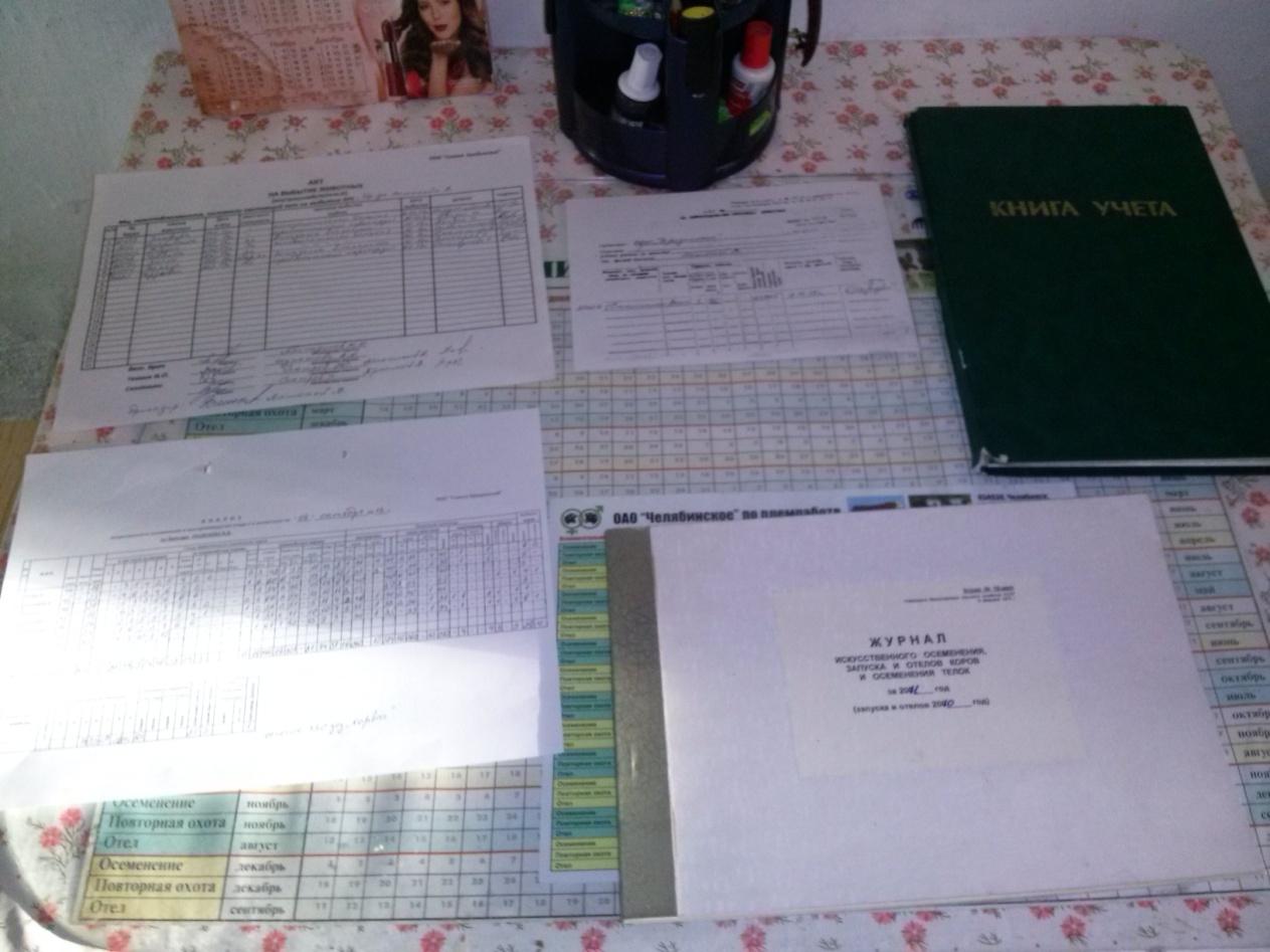 C:\Documents and Settings\Администратор\Рабочий стол\Шутёмова приложение\Новая папка\CAM00265.jpg