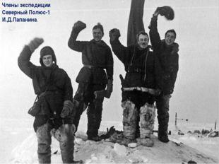 Члены экспедиции Северный Полюс-1 И.Д.Папанина.