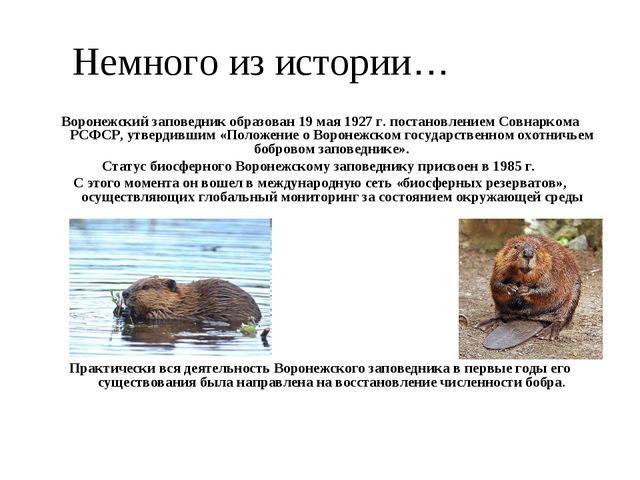 Немного из истории… Воронежский заповедник образован 19 мая 1927 г. постановл...