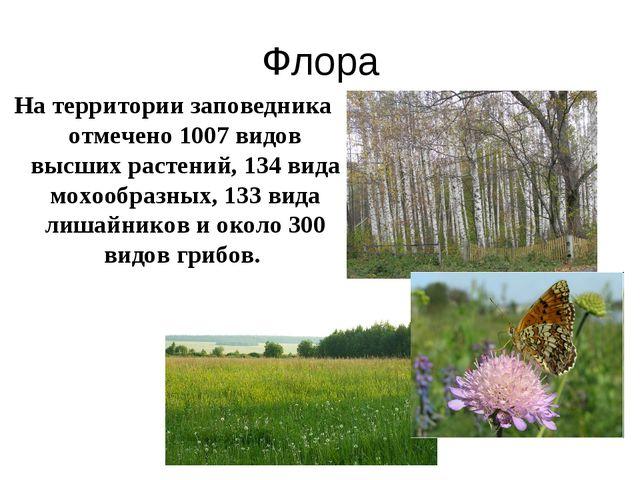 Флора На территории заповедника отмечено 1007 видов высших растений, 134 вида...