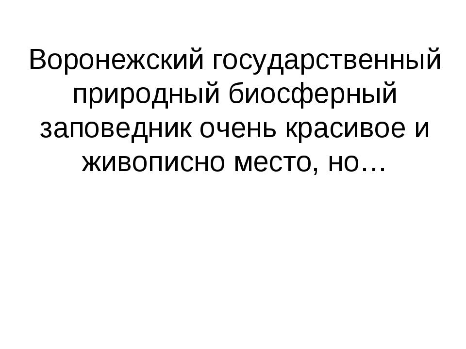 Воронежский государственный природный биосферный заповедник очень красивое и...