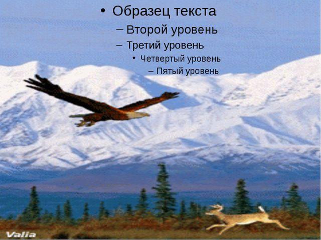 © Фокина Лидия Петровна © Фокина Лидия Петровна Щелчок
