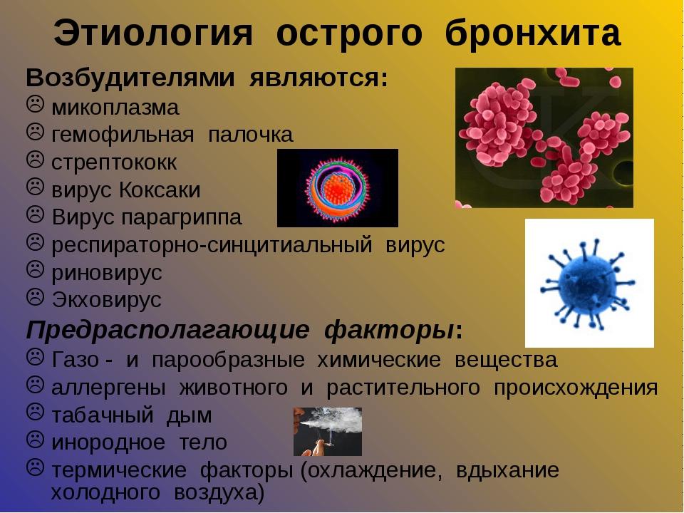 Этиология острого бронхита Возбудителями являются: микоплазма гемофильная пал...