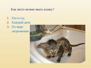 Как часто можно мыть кошку? 1. Раз в год 2. Каждый день 3. По мере загрязнени