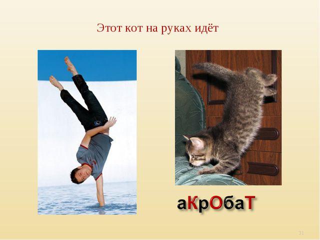 Этот кот на руках идёт *