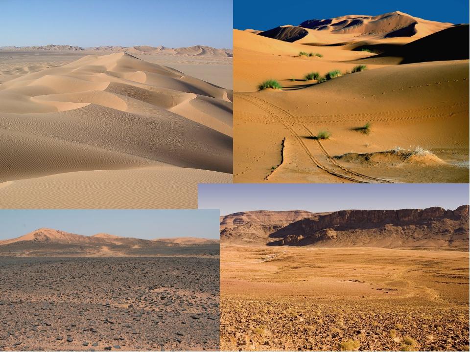Полупустыни и пустыни картинки для детей