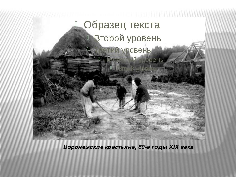 Воронежские крестьяне, 80-е годы XIX века
